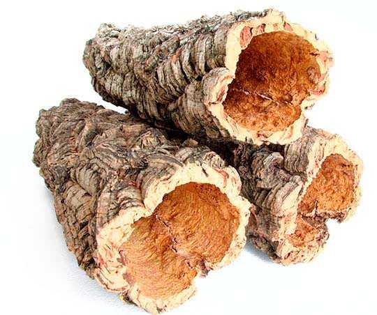 tronco-de-alcornoque-corteza-corcho-corkup